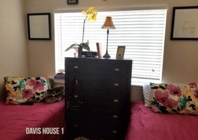 Davis HouseOne